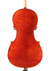 cello - Gaetano Gadda - back image