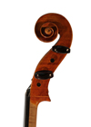 cello - Giuseppe Rossi - scroll image