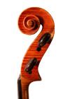viola - Pierre Vidoudez - scroll image