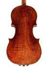 violin - Antonio Casini - back image