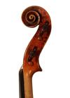 violin - Bernardus Calcanius - scroll image