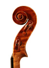 violin - Gaetano Pollastri - scroll image