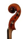 violin - Gioffredo Cappa - scroll image
