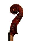 violin - Giovanni Francesco Pressenda - scroll image