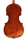violin - Giuseppe Salovdori - back image