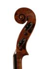 violin - Grancino Francesco. Son of Giovanni Battista - scroll image