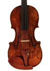 violin - Joannes Franciscus Celoniatus - front image