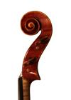 violin - Marino Capicchioni - scroll image