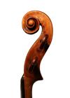 violin - Nicola Gagliano - scroll image