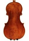 violin - Pietro Tononi - back image