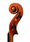 violin - Pietro Tononi - scroll image