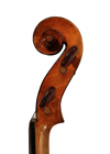 violin - Plinio Michetti - scroll image