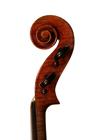 violin - Stefano Scarampella School - scroll image