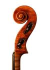 violin - Vincenzo Trusiano Panormo - scroll image